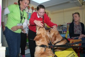 The Irish Guide Dogs visited the ASD unit.